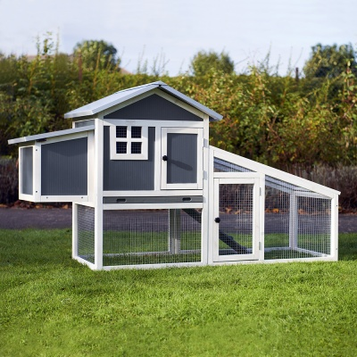 Windsor Plastic Chicken Coop and Run