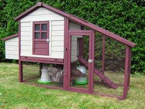 Chicken Coops & Chicken Runs